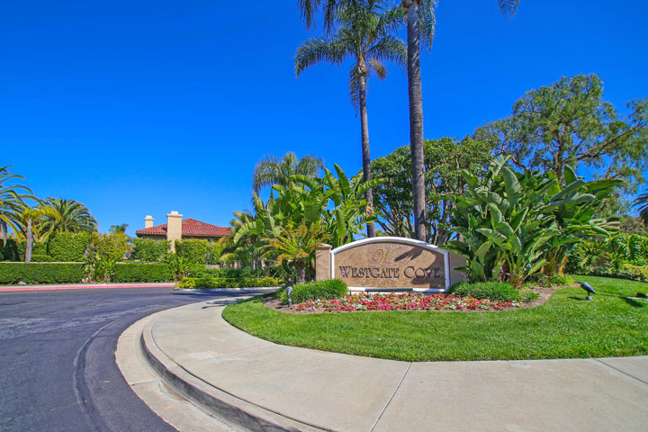 Laguna Niguel Luxury Homes